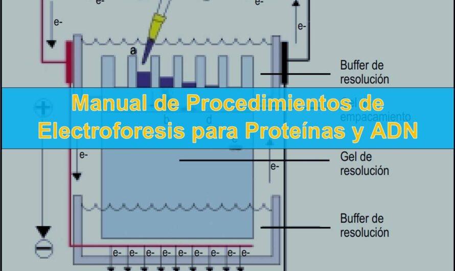 Manual de Procedimientos de Electroforesis para Proteínas y ADN
