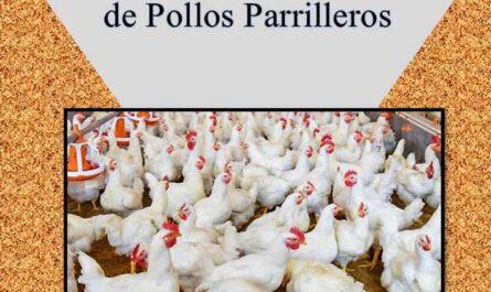 Guía Práctica para el Productor de Pollos Parrilleros