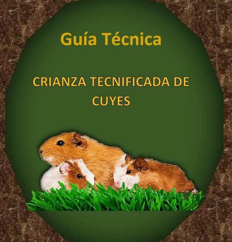 Guía Técnica Crianza Tecnificada de Cuyes