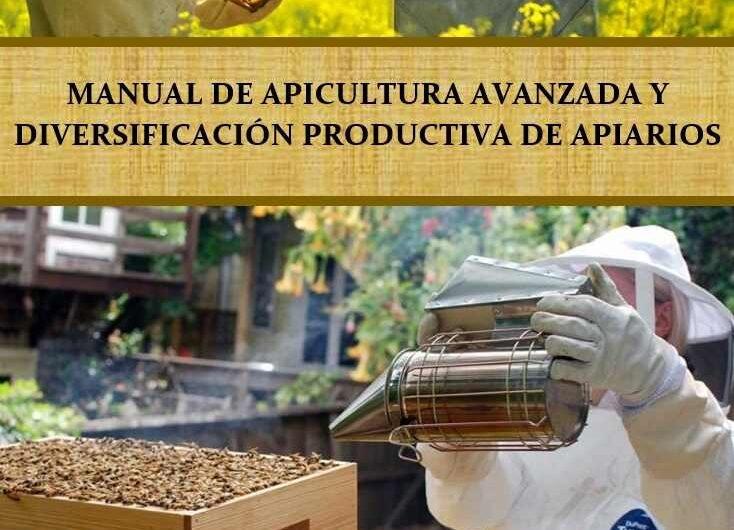 Manual de apicultura avanzada y diversificación productiva de apiarios