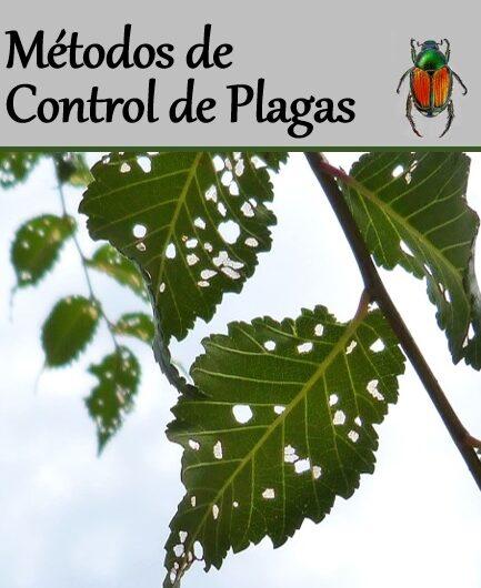 """GUÍA – """"Métodos de Control de Plagas"""""""