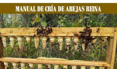 MANUAL DE CRÍA DE ABEJAS REINA